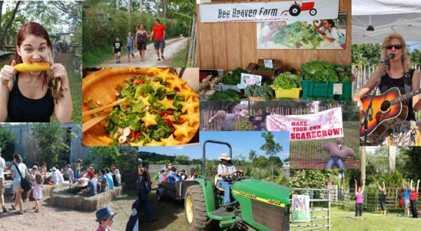 farm-day-collage